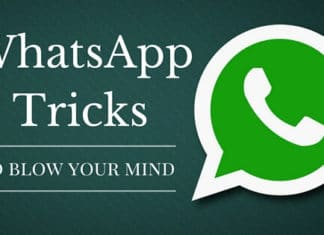 WhatsApp Tricks and Tips